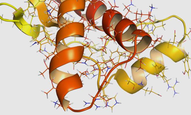 Prionen: Killer & versklavte Wächter der Nervenzellen